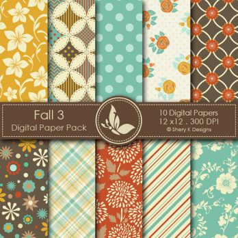 Fall 3 Digital Papers
